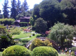 Japanese Gardens and the Huntington